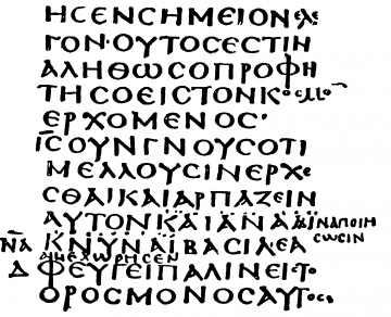 medium_sinaiticus_gros_plan_.png