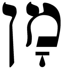 manne,manna,pain du ciel,pain des anges,providence,don de dieu,tamaris,tamarix mannifera