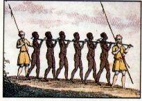 racisme,esclavage,malédiction,noé,fils de noé,cham,canaan,ségrégation,guillaume herbieux,ivresse de noé