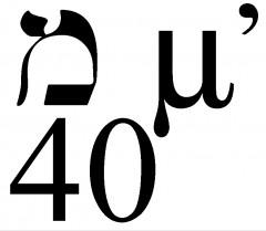 40.jpg